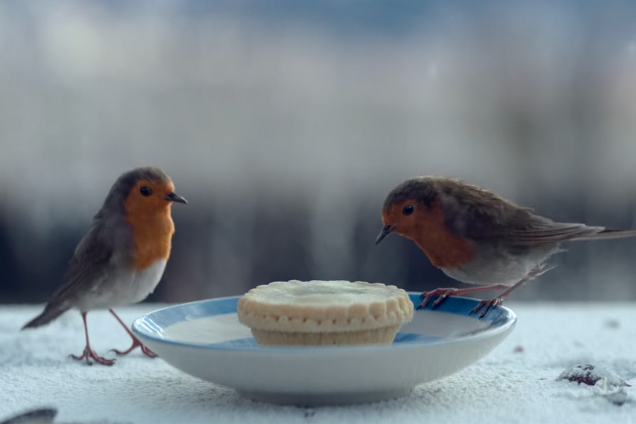 Waitrose-Christmas-Advert